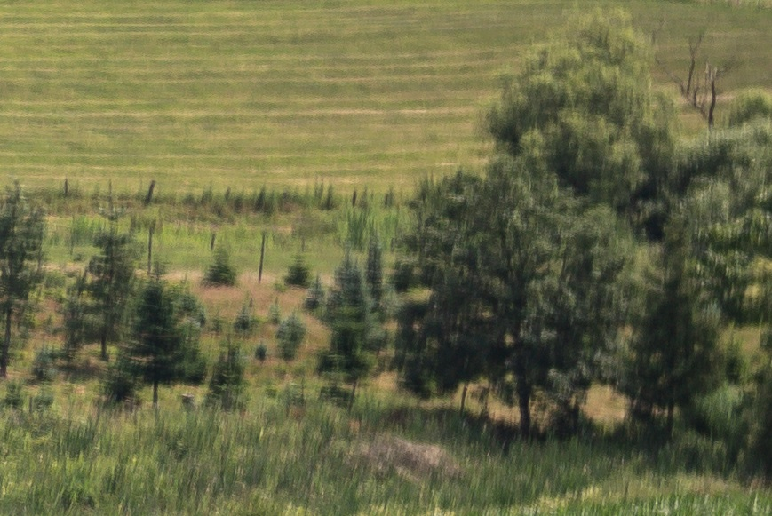 Name:  Crop Landschaft Rand B1.jpg Hits: 37 Größe:  190,6 KB