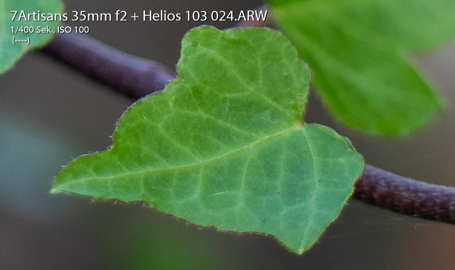 Name:  Crop 24.jpg Hits: 338 Größe:  144,3 KB