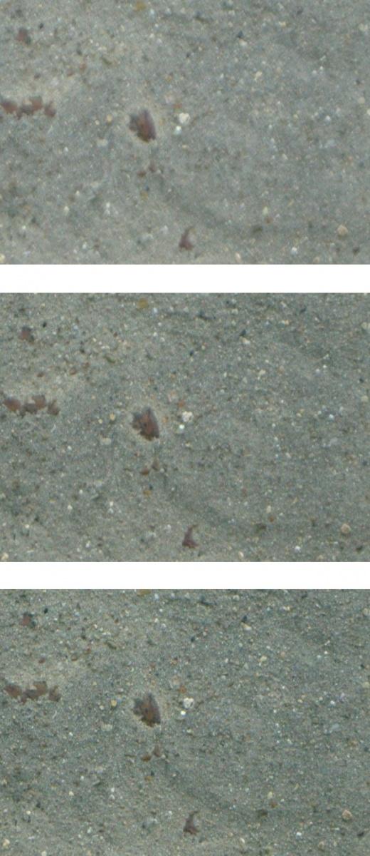 Name:  wand-mitte.jpg Hits: 1753 Größe:  220,9 KB