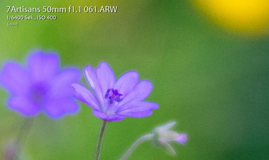 Name:  Crop Bild 61.jpg Hits: 2409 Größe:  189,0 KB