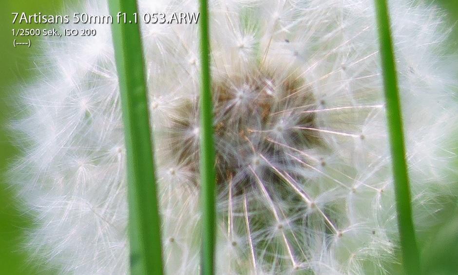 Name:  Crop Bild 53.jpg Hits: 2389 Größe:  189,3 KB