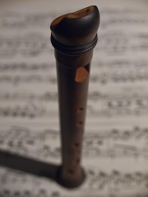 Name:  flötenmakro..JPG Hits: 1076 Größe:  151,5 KB