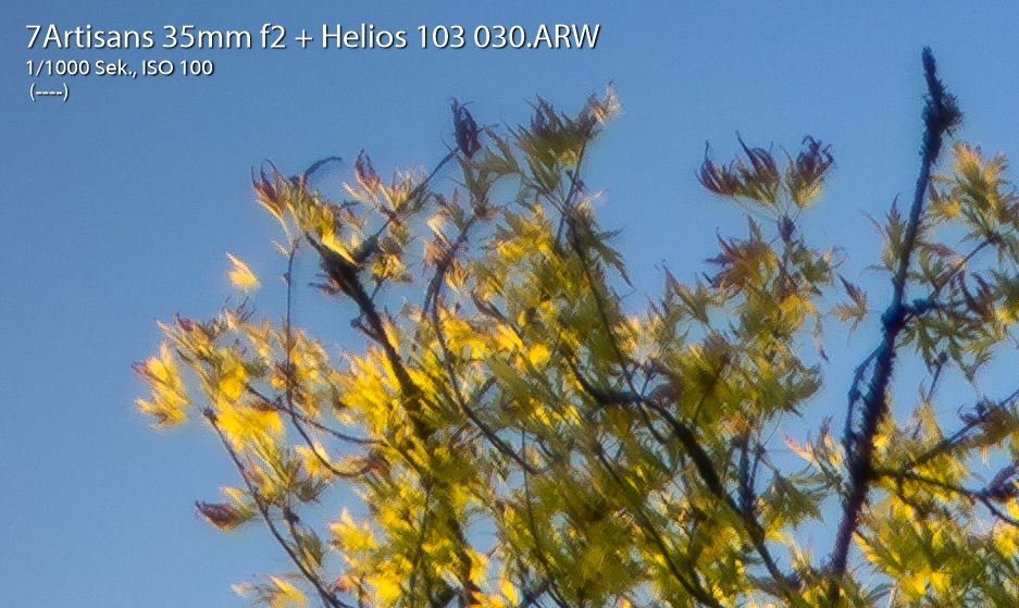 Name:  Crop 30 - CAs.jpg Hits: 287 Größe:  215,5 KB