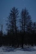 Winternacht im Löcknitztal