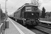 242 001-6 DEUTSCHE REICHSBAHN - POWER aus WOROSCHILOWGRAD von crazy-photo