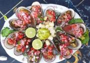 marisco conchas del Perú