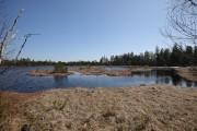 Wildsee von K_Mar
