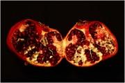 Granatapfel von Bergteufel