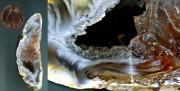 Makro eines Achatsteines