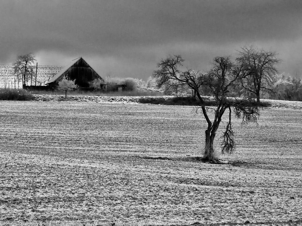 Winter in Franken 2019/20