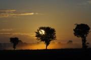 Sonnenaufgang plus Nebel