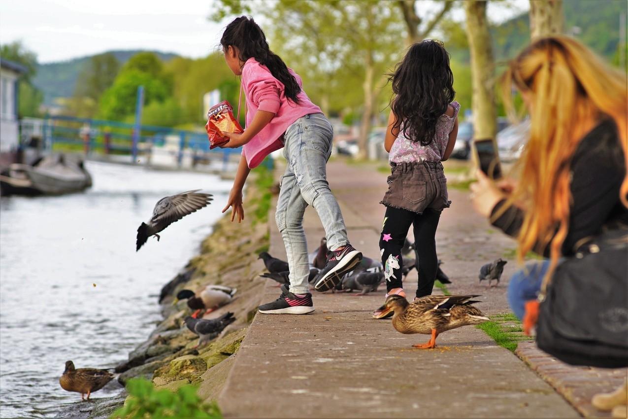 Modern times - Vögel füttern heutzutage