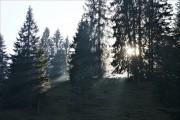 Sonnenstrahlen von gladstone