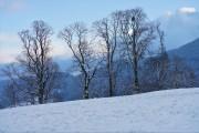 der erste Schnee von gladstone