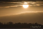 Creme Sonne von Zeusway