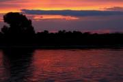 Abendlicht auf der Elbe bei Magdeburg