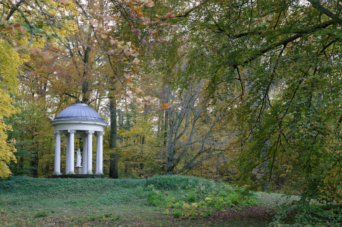 Herbst im Schlosspark Bad Köstritz