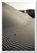 Dünen von Maspalomas 1