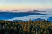 Nebelmeer Nordschwarzwald
