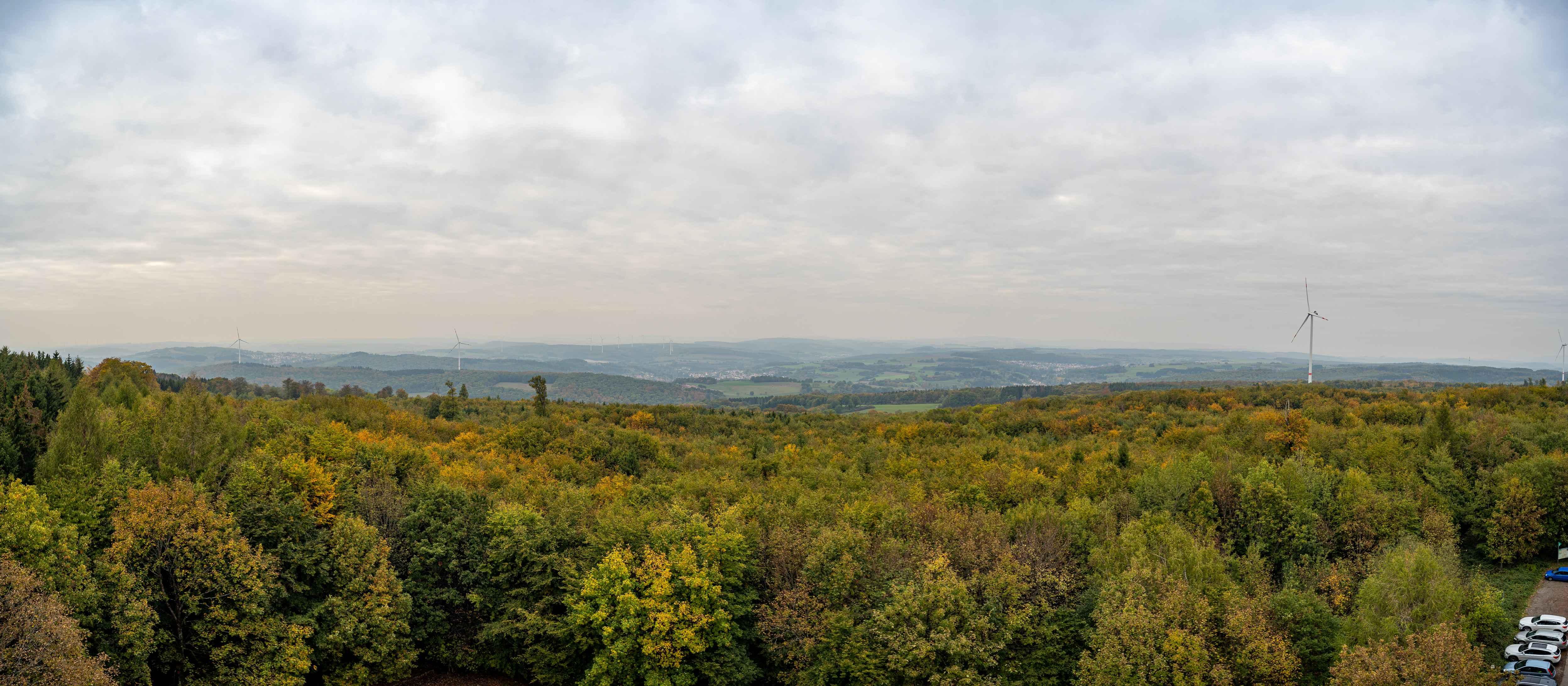 Ausblick vom Höcher Turm 1
