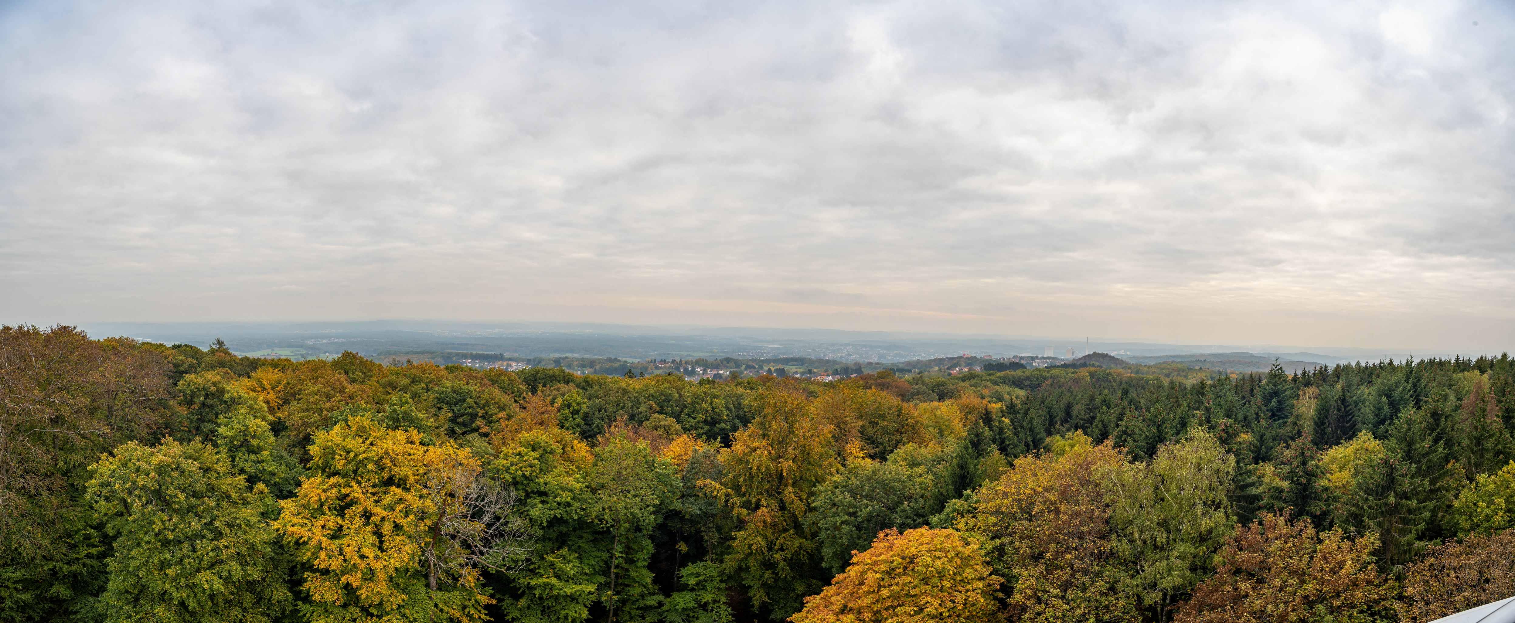 Ausblick vom Höcher Turm 2